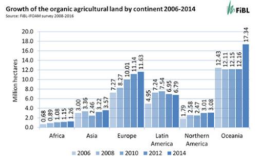 Apesar da crise, o mercado orgânico mundial está crescendo