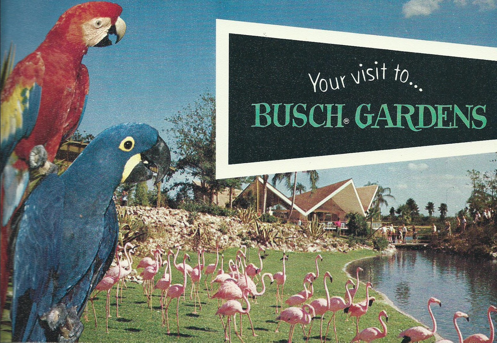 On The Road Again Busch Gardens Tampa Florida