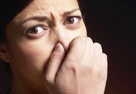 Penguji bau mulut