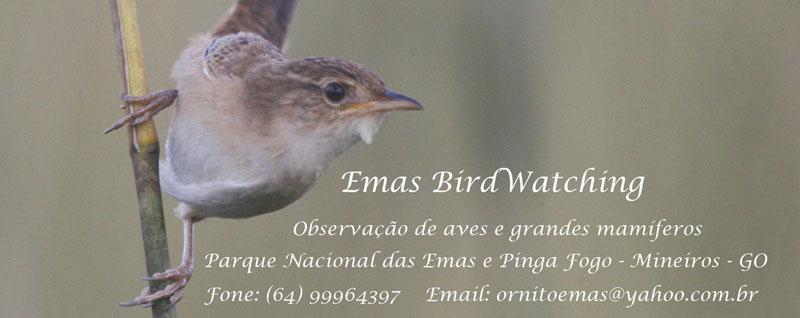 Emas BirdWatching