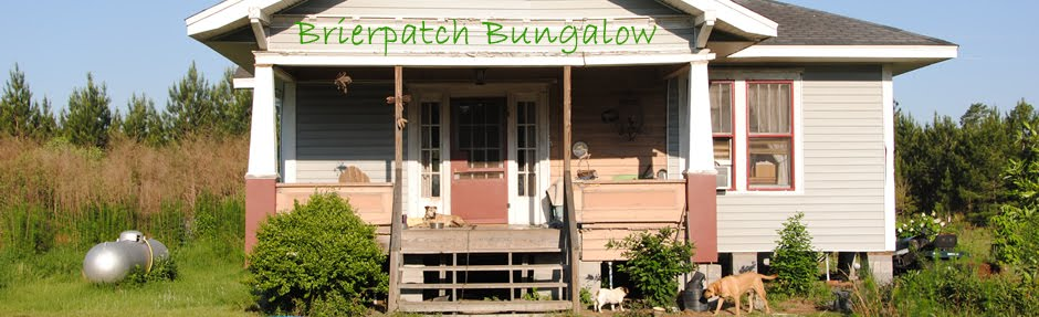 Brierpatch Bungalow
