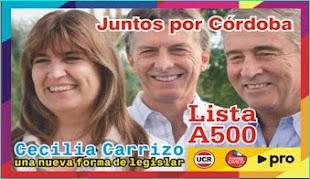 Cecilia Carrizo legisladora