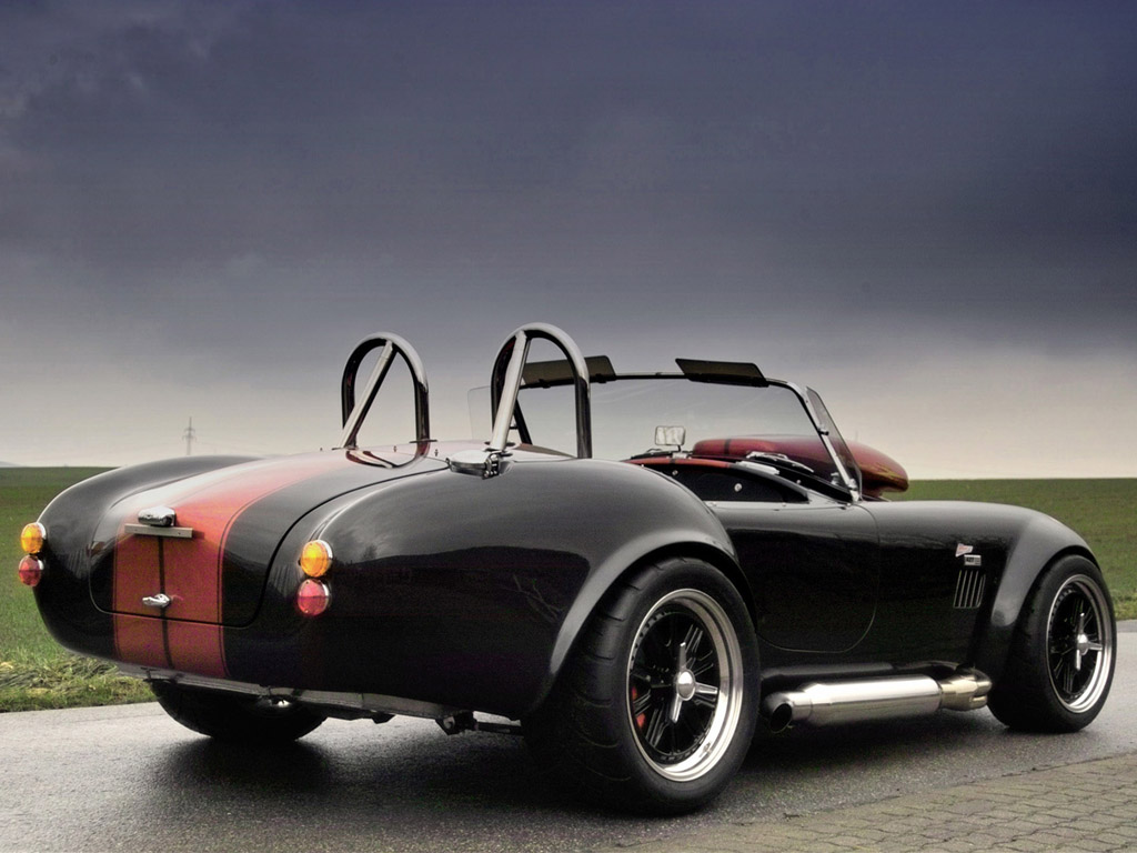 Cobra Pedal Car http://bestcarsauto.blogspot.com/2011/08/fastest-muscle-car-2006-weineck-cobra.html