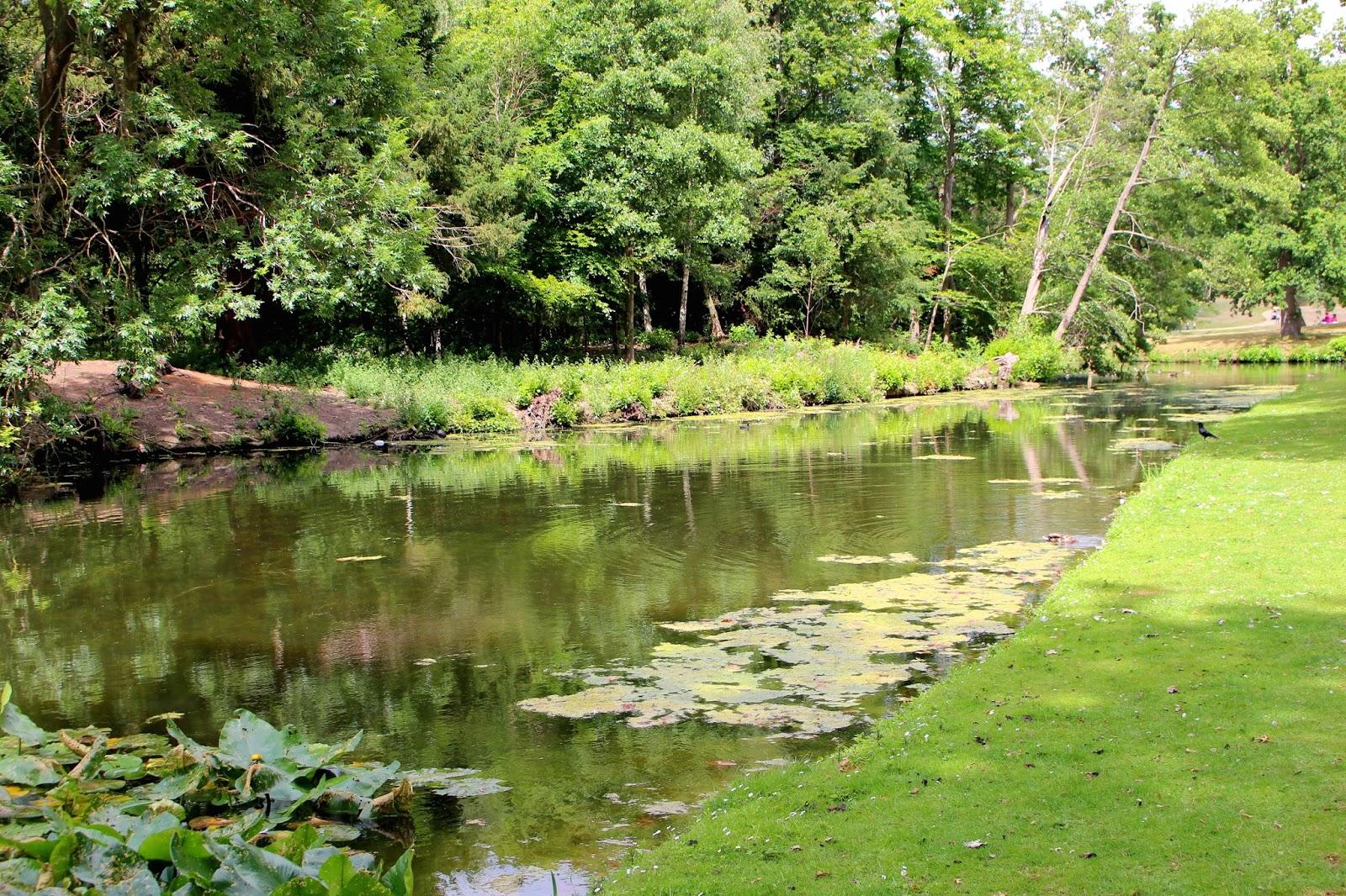 Painshill Park Surrey