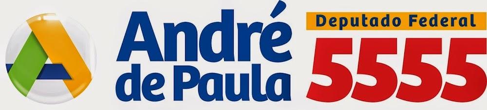 Deputado Federal - Pernambuco