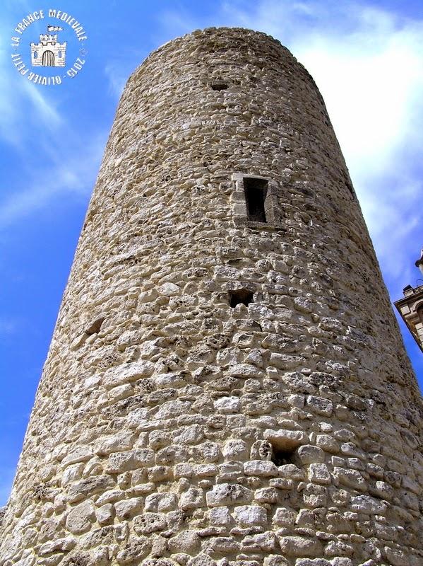 REILLANNE (04) - Le château et les remparts
