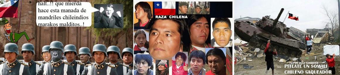 ....... NOTICIAS CHILE