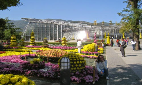 image of Beijing botanical garden