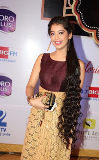 Zee tv 8th boroplus gold awards 2015