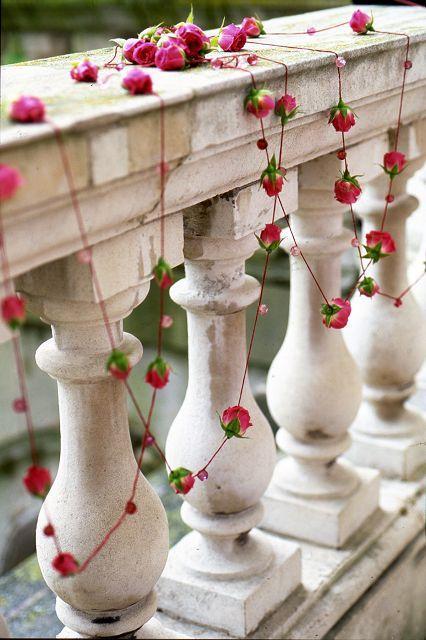 inspirational flowers by zita elze