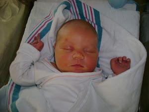 Baby Elliott Lochlyn Stever