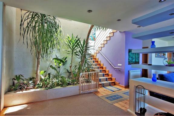 Living's room interior garden
