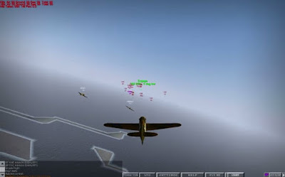 WarBirds: World War II Combat Aviation