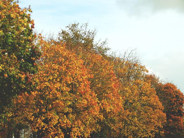 October is... || Blogtober
