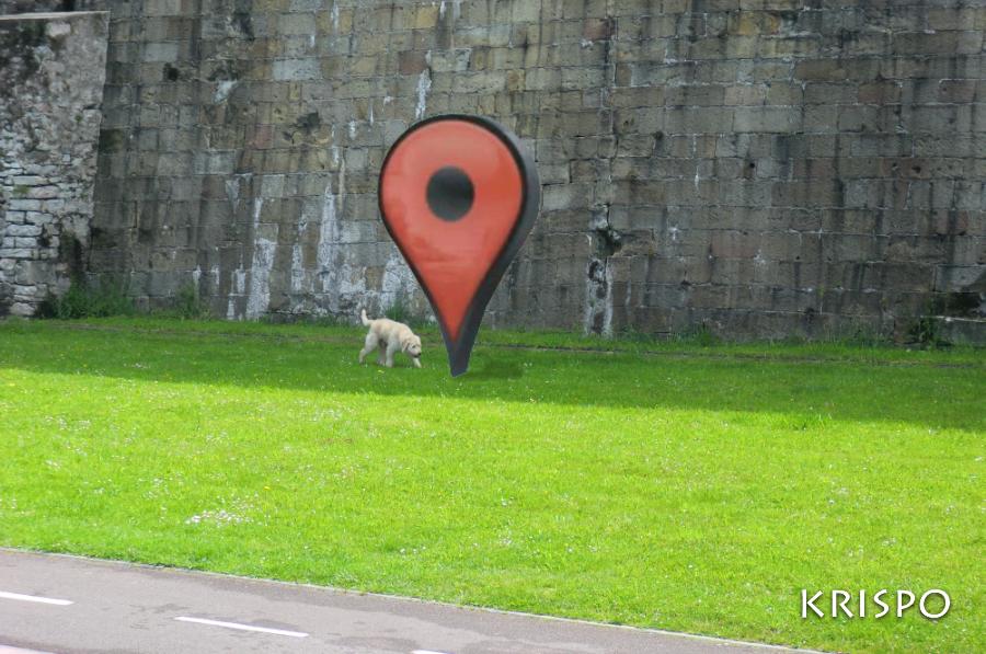 fotomontaje de un marcador de google en cesped con perro