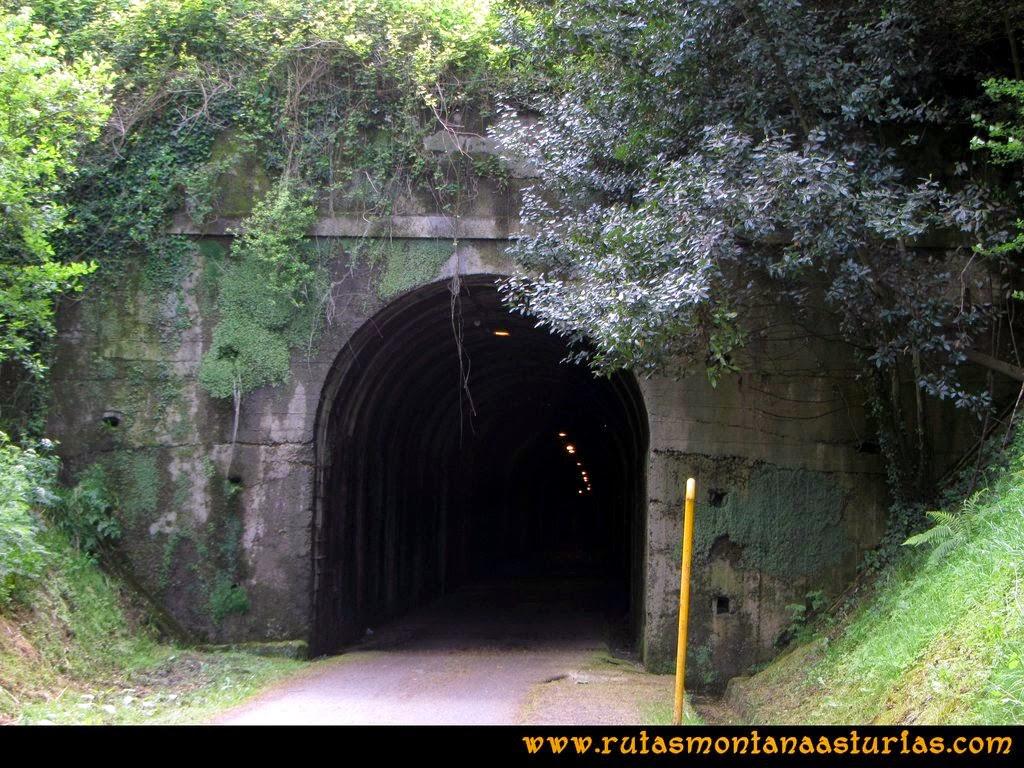 Senda Verde Camocha - Pico Sol - Piles: Antiguo túnel del tren en la senda verde