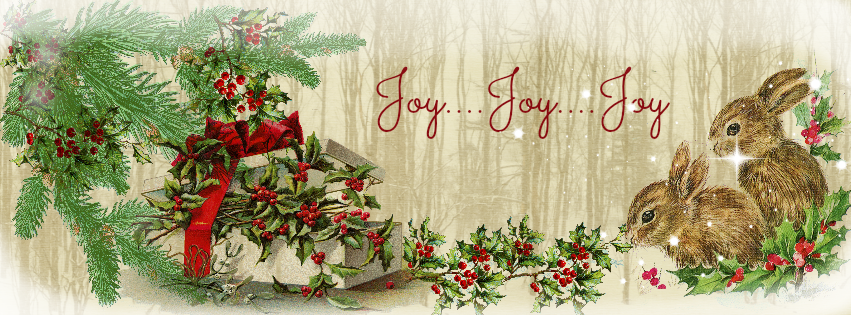 Glendas World Christmas Facebook Covers