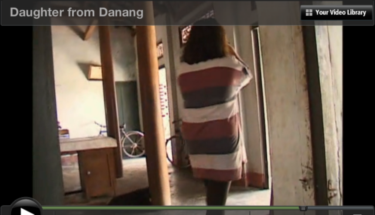 daughter from danang 2 essay Present in daughter from danang, as it is a riveting and moving documentary that made an impact on the film industry in the documentary, daughter from danang, it brings forth the filmmaker's motivation.