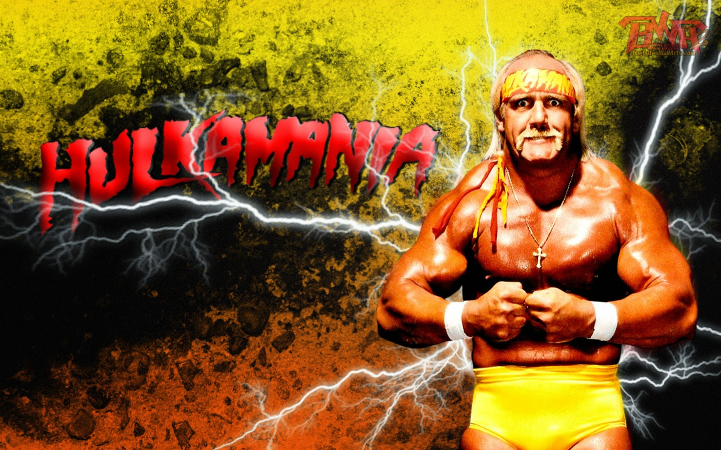 hulk hogan wallpapers - photo #1