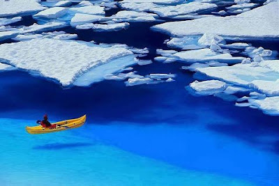 Glacier_Bay_National_Park_Alaska