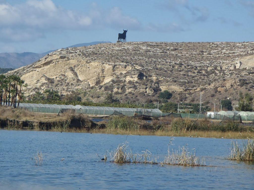 http://www.panoramio.com/photo/106263642