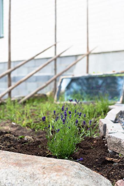 riukuaita, heinäseivät, lavankaulus, vanhat ikkunat, maalaismaisema, maisema, kuvaus, maaseutu, blogi, laventeli