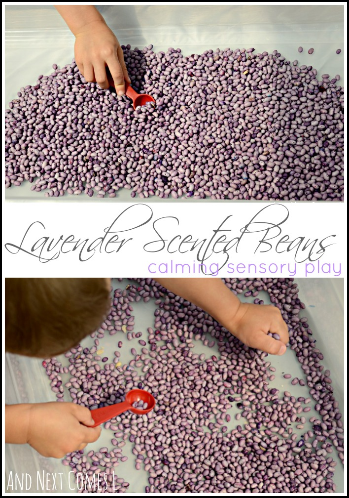 Calming sensory play for kids: lavender scented & dyed beans from And Next Comes L