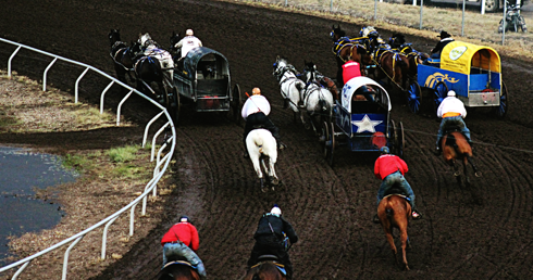 chuckwagon races medicine hat alberta photography
