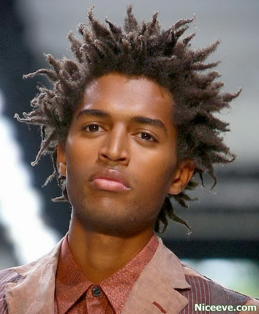 famous trendy dreadlock hairstyles