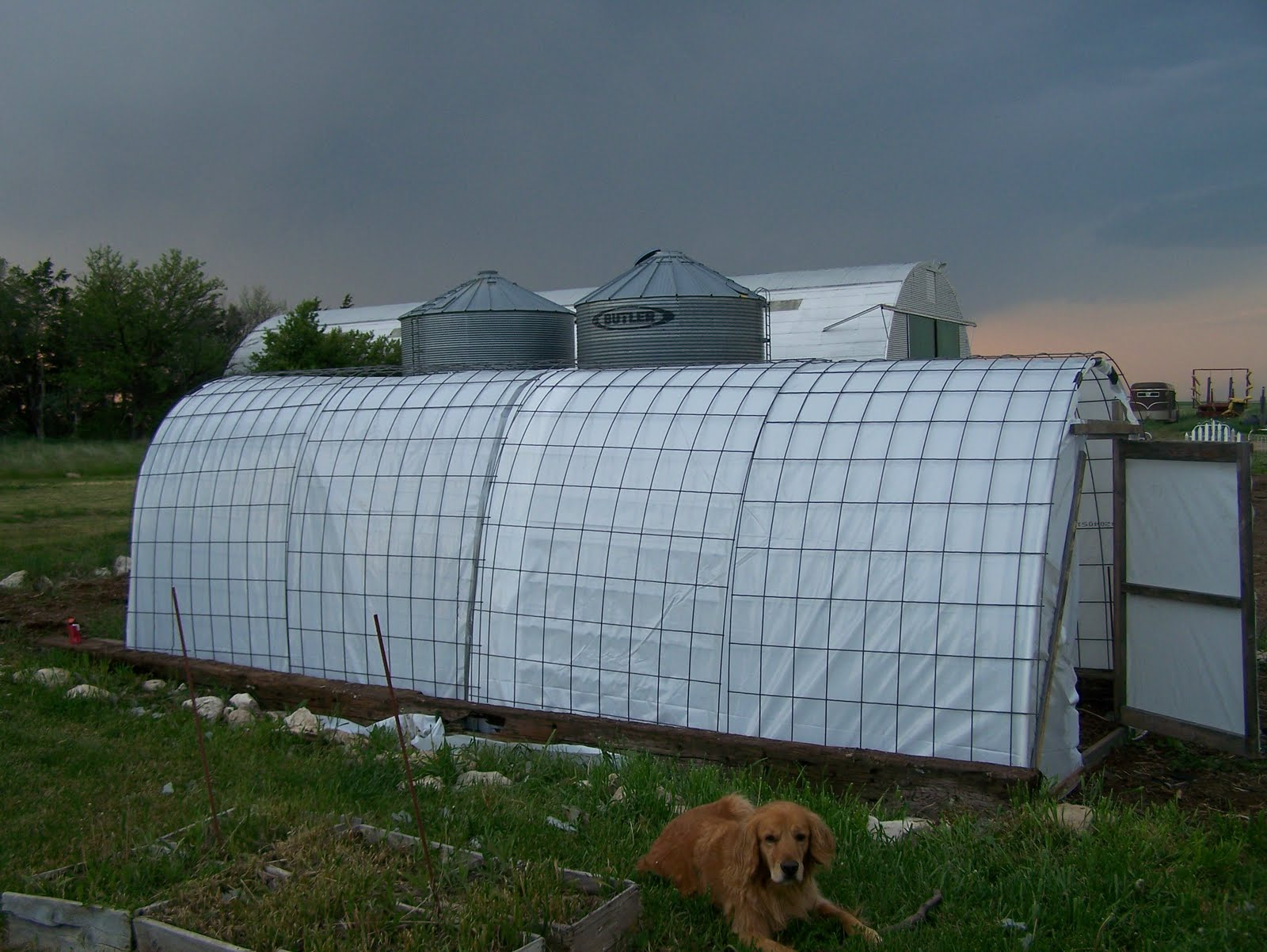 gothic arch greenhouse plans html with Pvc Green House on Build Shed Roof Youtube 19 together with Gothic Floor Plans furthermore Portable Greenhouse Diy Kit also Pvc Green House moreover Greenhouse Wood.