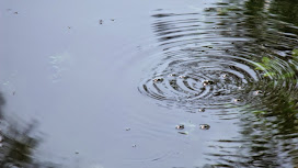 Bolhas de ar na superfície da água