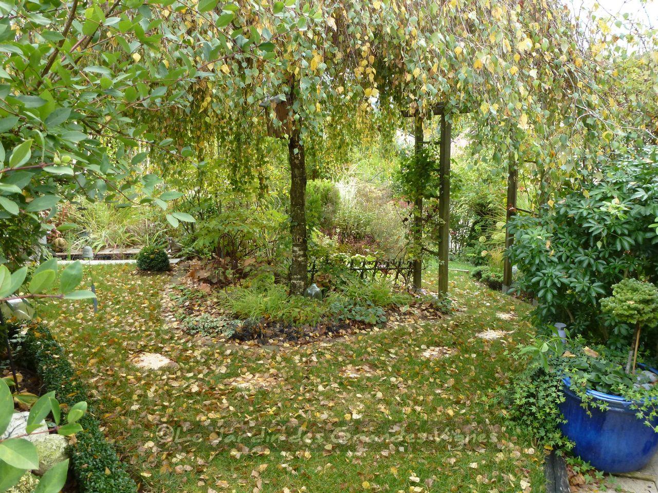 Le jardin des grandes vignes tapis de feuilles - Le jardin des grandes vignes ...