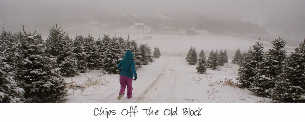 Chips off the old Block
