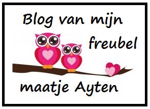 Blog van mijn freubelmaatje
