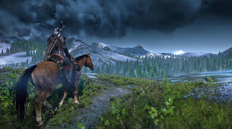 Witcher 3: Wild Hunt RPG