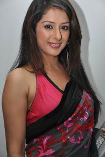 Sameeksha Singh Pictures in Saree At Kulu Mi Audio Release