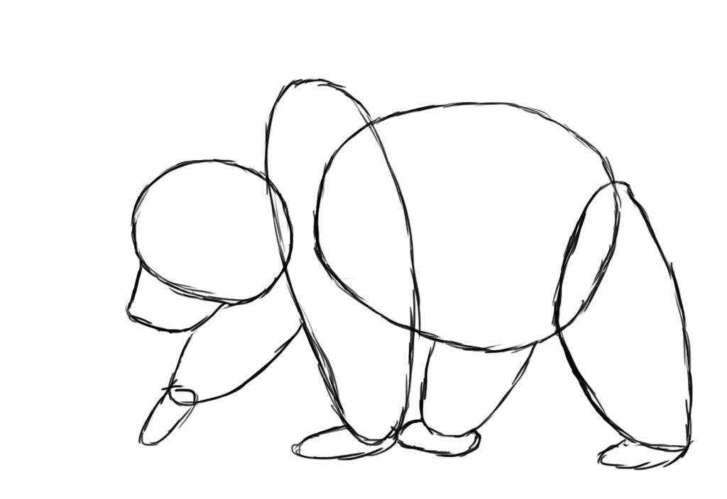 how to draw bear - photo #38