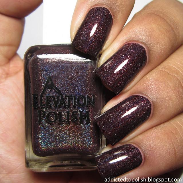 elevation polish paris