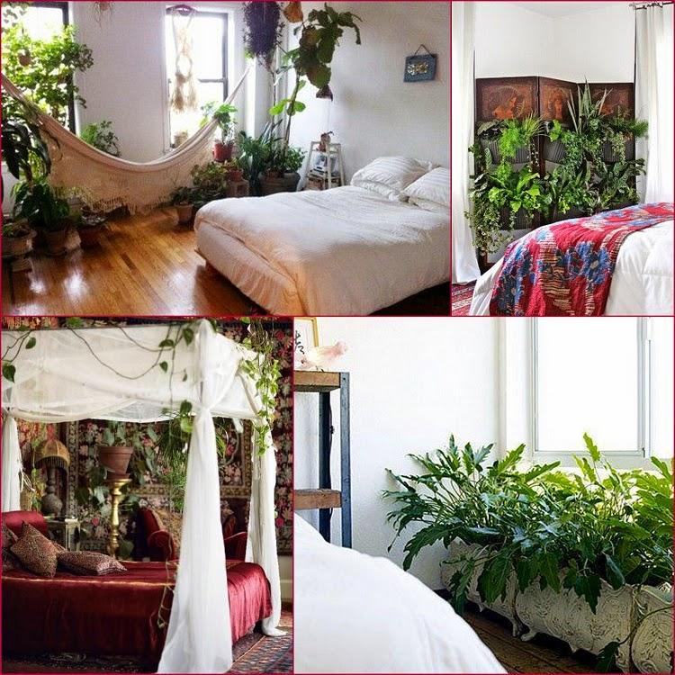 gypsy yaya plants in the bedroom