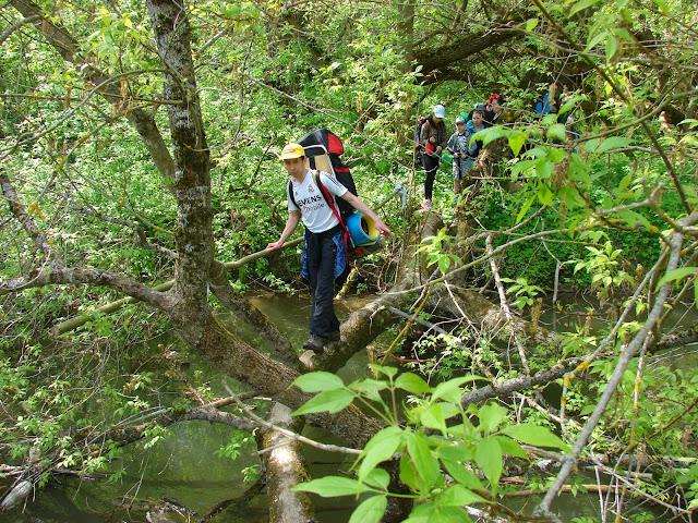 Переход через Тернаву по мостику-дереву