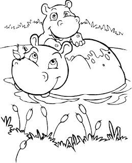 Hipopótamo – Desenhos para Colorir