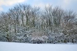 Schnee in der Heimatstadt...