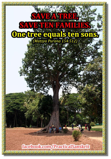 save trees essay in sanskrit Answerscom ® categories literature & language languages and cultures english language writing and composition academic writing essays an essay on trees in sanskrit save cancel already.