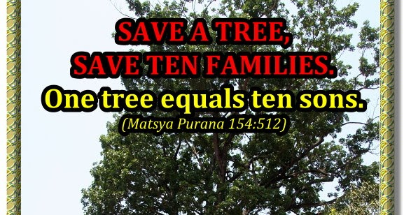 sanskrit school essay on tree