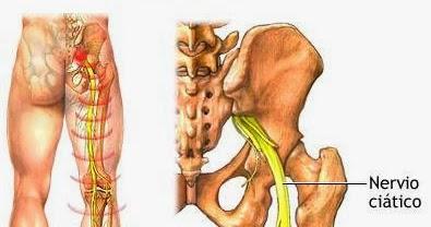 Los dolores en los riñones a la izquierda al embarazo sobre los plazos tempranos