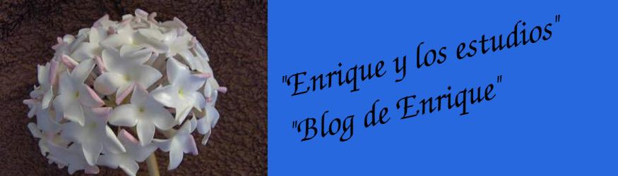 Enrique y los estudios