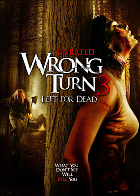 Camino Hacia El Terror 3 2009 | DVDRip Latino HD Mega