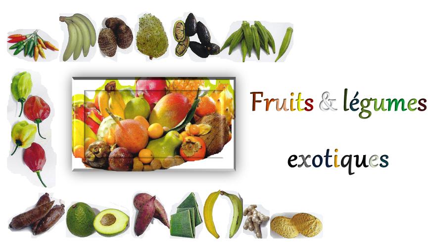 Vernonya fun and news - Haricot vert fruit ou legume ...