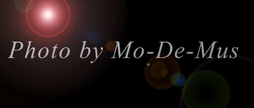 Mo-de-mus Photography