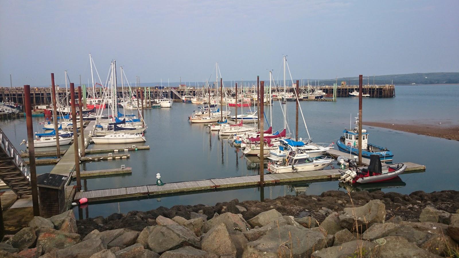 RWNYC Marina
